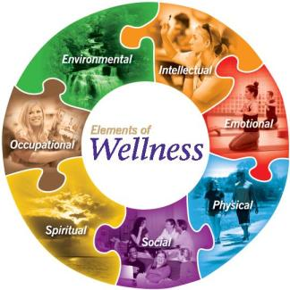 Wellness-Wheel-2013